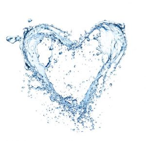 המים בלב הבריאות שלנו